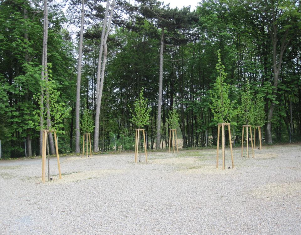 Grünwert Parkanlagen